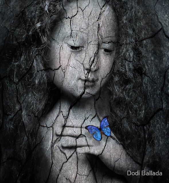 blue butterfly by timelessfancy