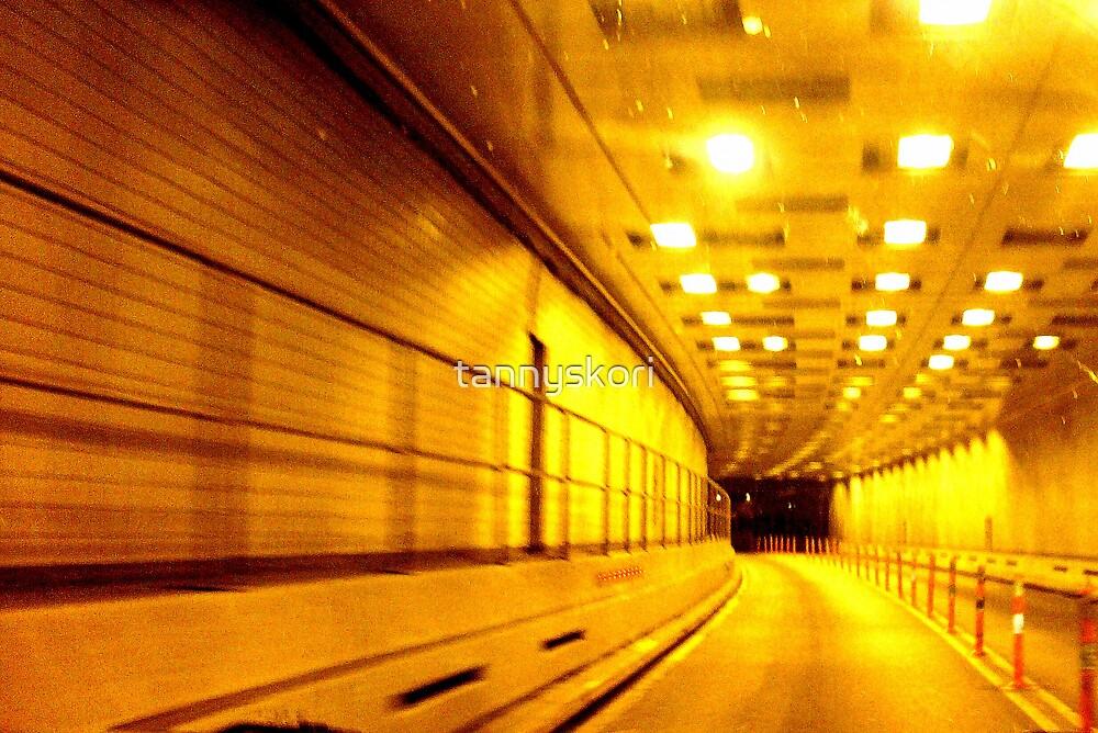 Battery Tunnel  by tannyskori