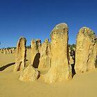 The Pinnacles #3, WA by lezvee