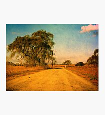 The Bend in the Road by the Willow Tree Photographic Print