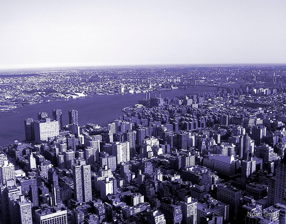 New York, Through Purple Glasses  by Noah Smith
