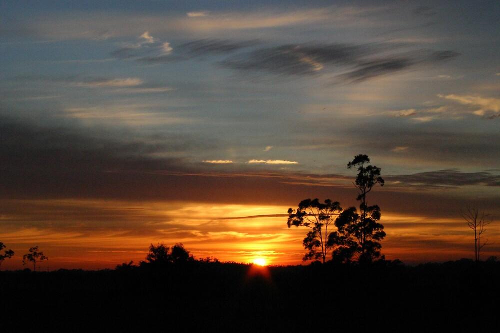 Sunrise at Narangba by kerryedward
