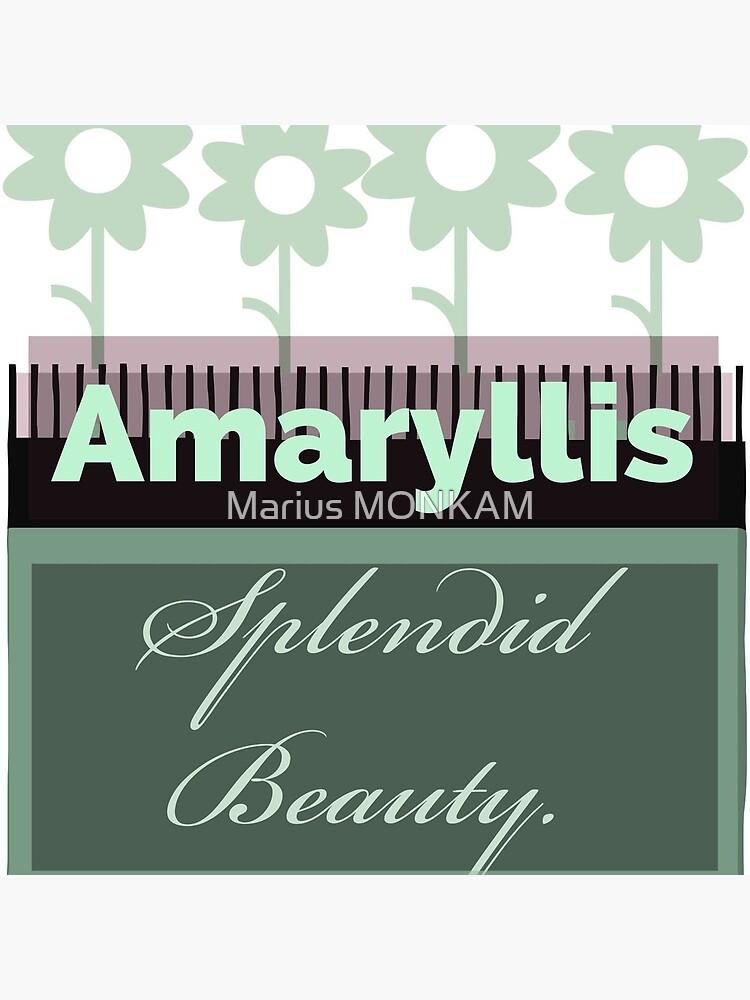 Amaryllis green  by CloudMonde