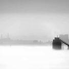 1692 Misty blanket by Hans Kawitzki