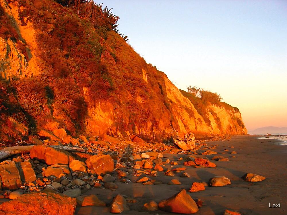 Cliffs Lowtide by Lexi