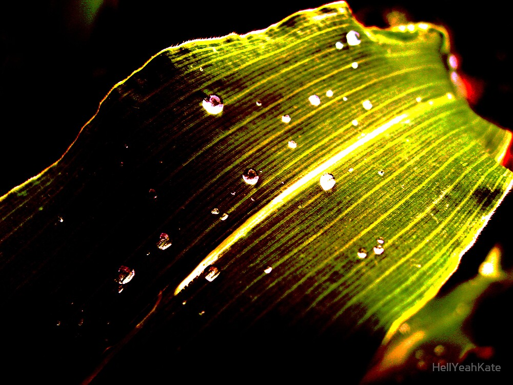 Water Droplet by HellYeahKate