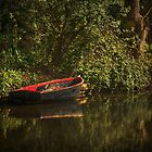 Dinghy On The Oxford Canal by IanWL