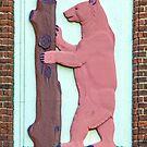 The Bear by Ktphotouk