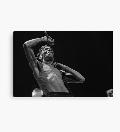 Tricky Is Noisy Canvas Print