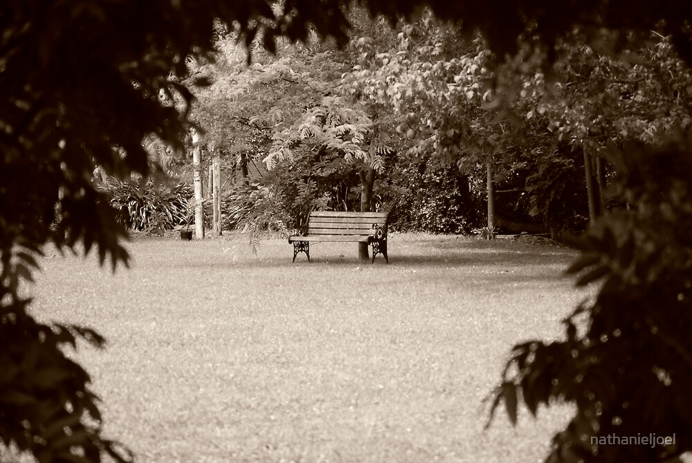 The Secret Garden Chair by nathanieljoel