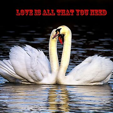 Love is all that you need! by Violaman