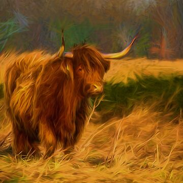 Highland cow with painterly effect by Violaman