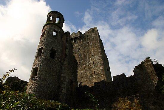 "Blarney Castle Ireland home of the ""Blarney Stone"" by terryjackson"