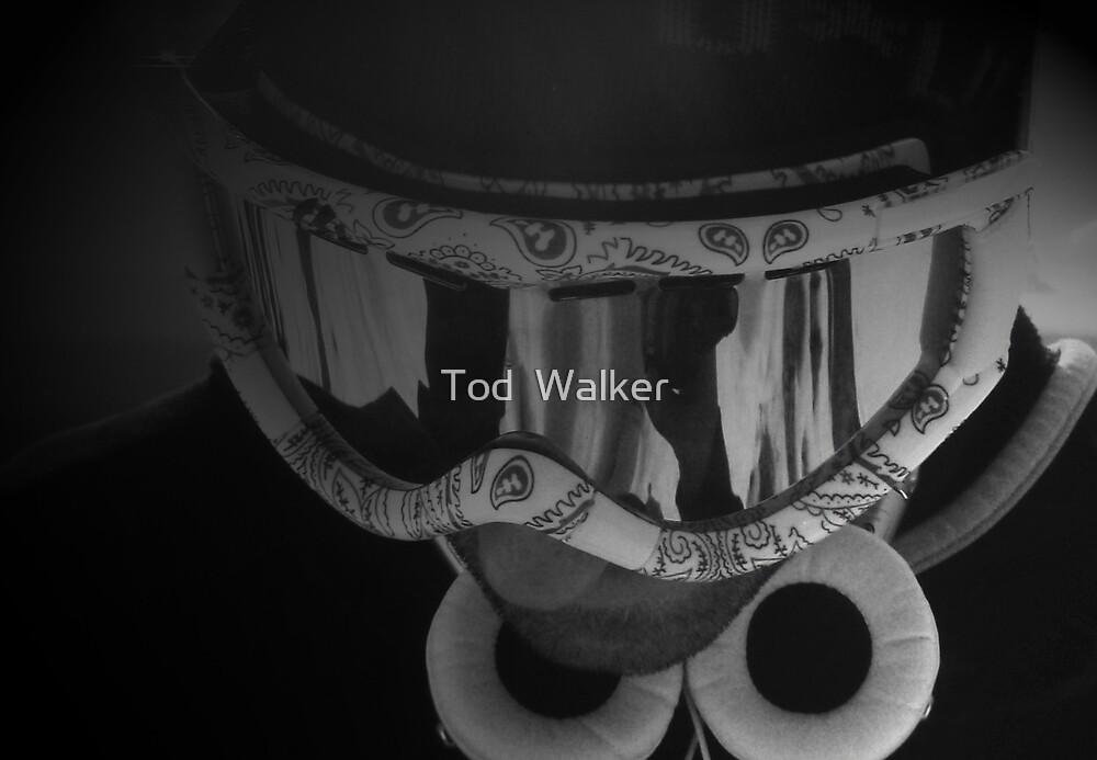 snowman by Tod  Walker