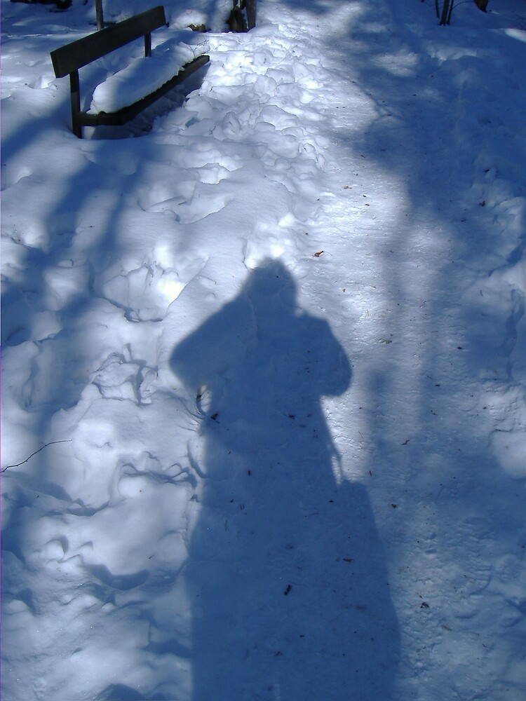 Shadow in the Snow by stevebrittain