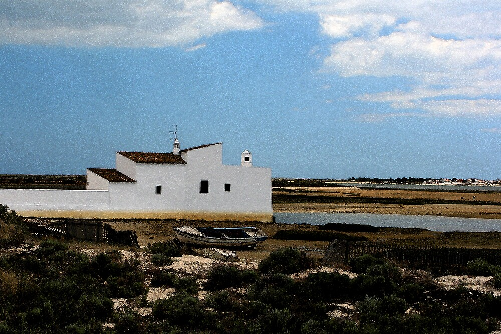 Tidal Mill - Ria Formosa by jardin