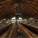 Southern Cross Station by Damien Pearse