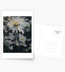 Daisies Postcards