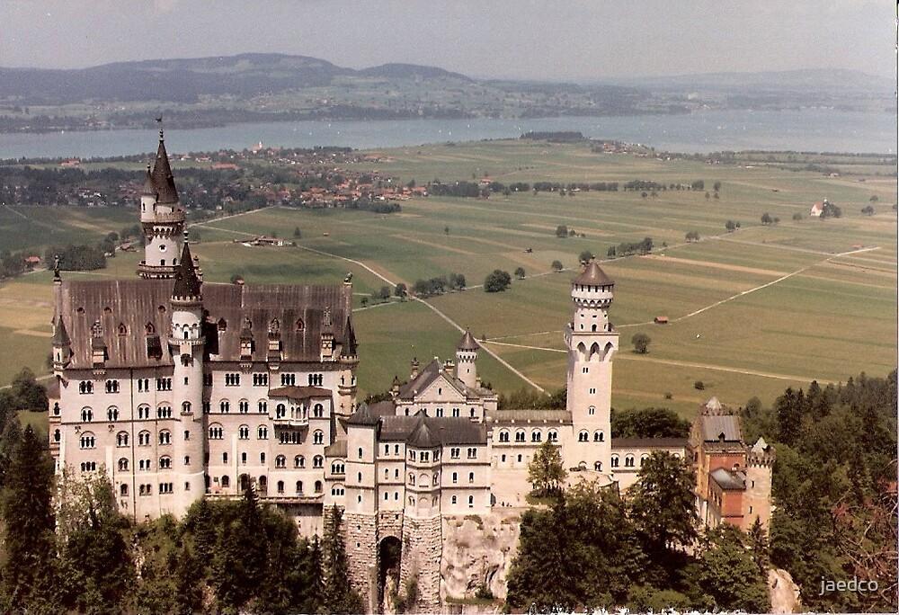 Neuschwanstein Castle by jaedco