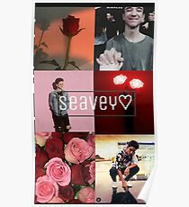 why dont we flower Poster