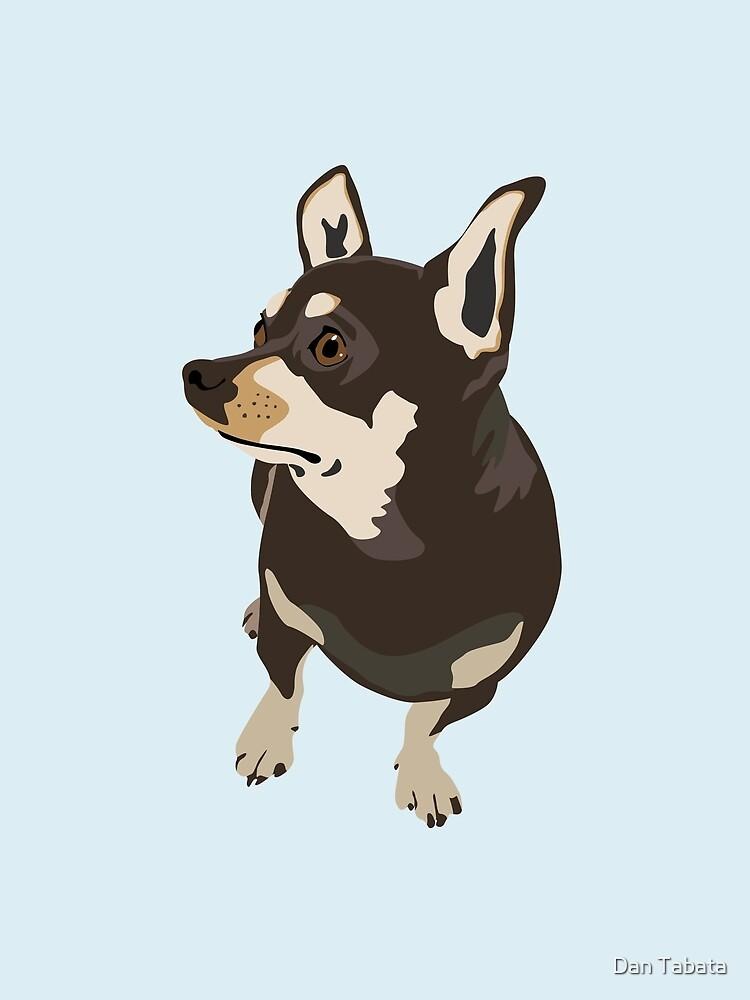 Hopeful Dog by Dan Tabata