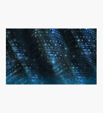 Whale Shark Skin2 Photographic Print