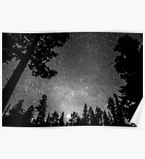 Dark Stellar Universe Poster