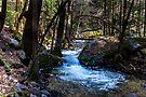 Yosemite North Fork Merced River by photosbyflood