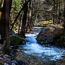 Yosemite North Fork Merced River by photosbyflood