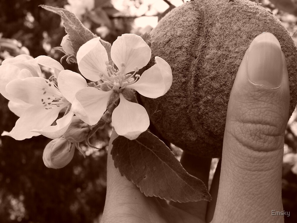 Don't Sit Under the Apple Tree With Anyone Else But Me by Emsky