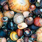 The Shore by Stuart Robertson Reynolds