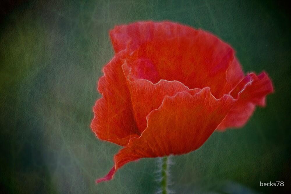 Poppy by becks78