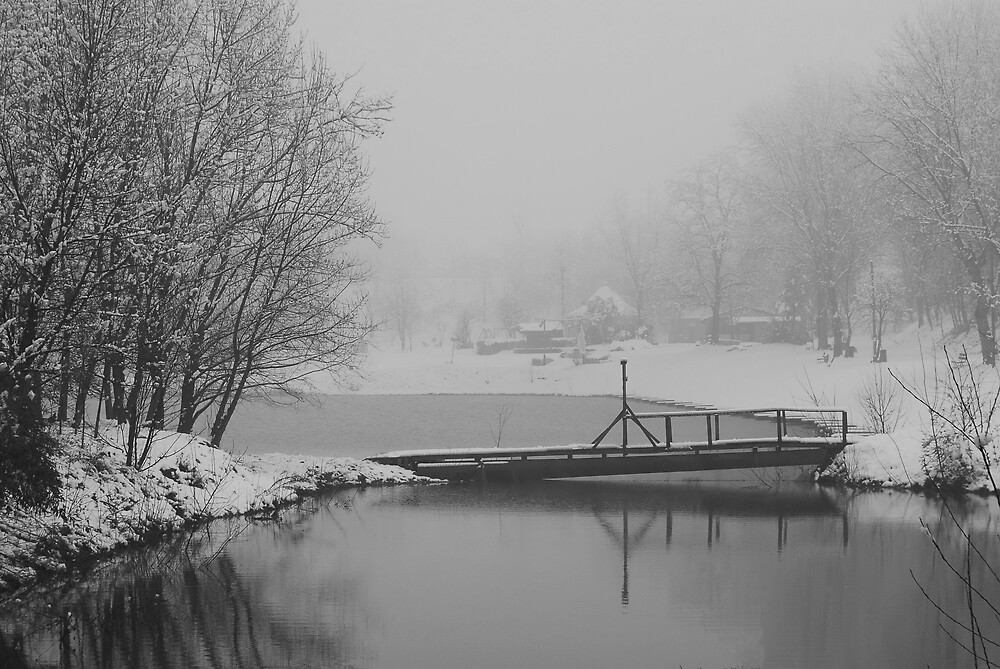 pippo's bridge. by giuseppe maffioli