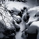 Sculptured Rocks in Velvet: by Wayne King
