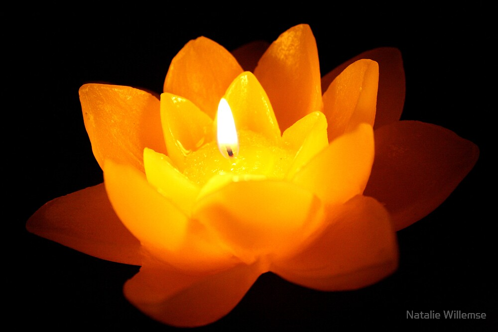 Light my way by Natalie Willemse