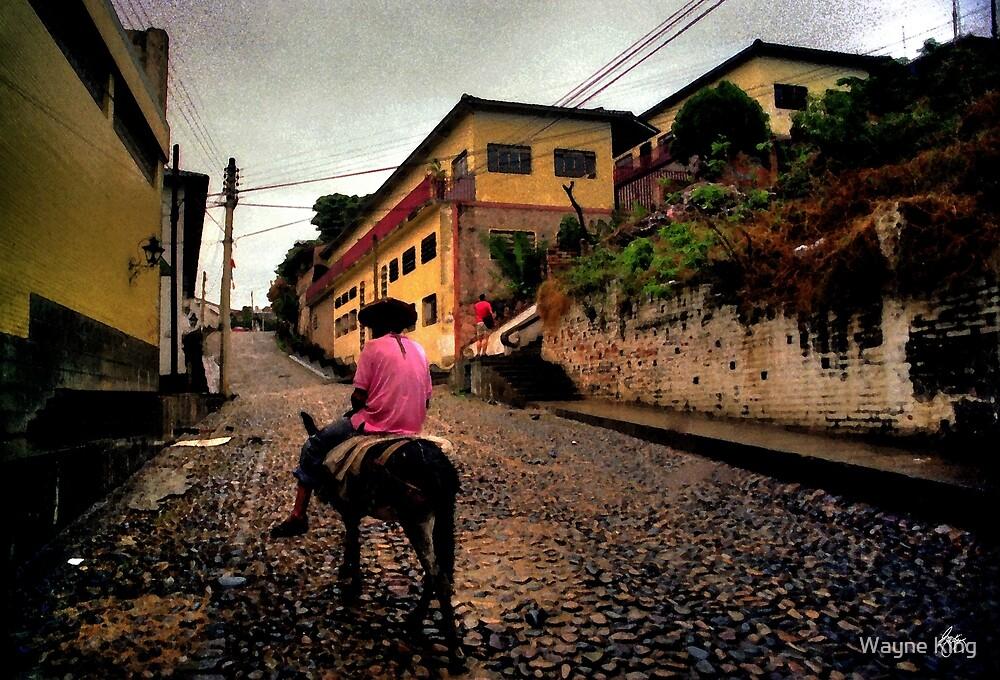 Burro Rider , Puerta Vallarta Mexico by Wayne King