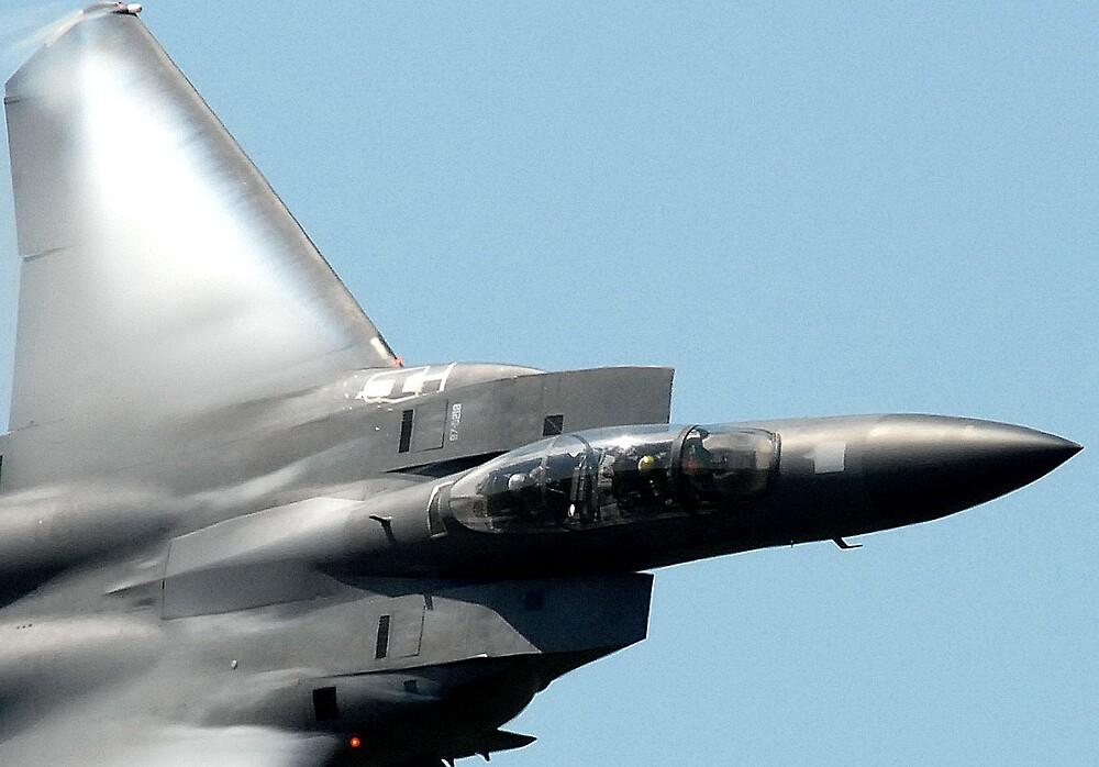 F15e strike eagle by giuseppe maffioli