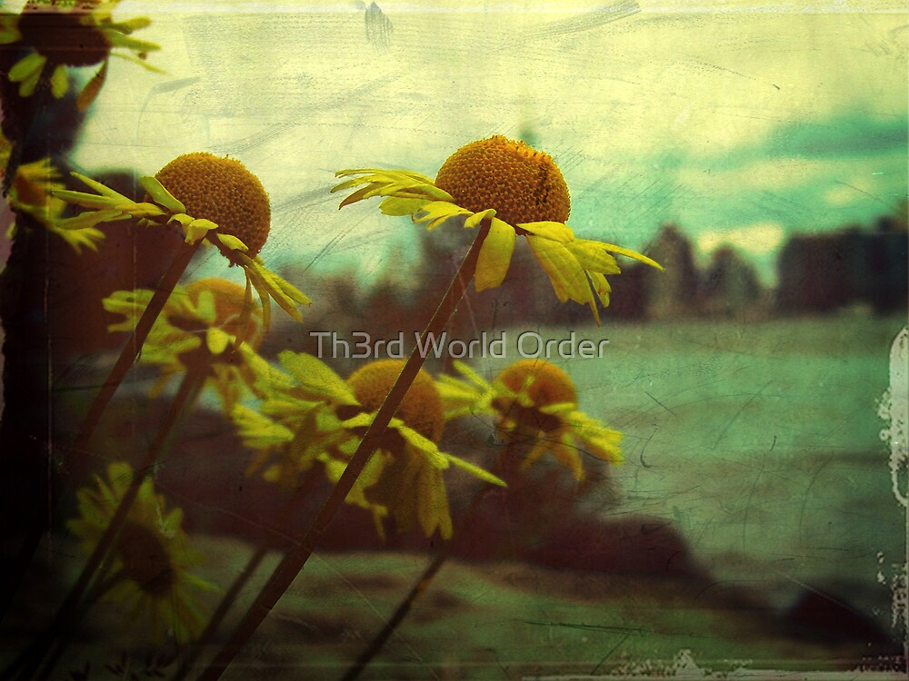 Reach out by Th3rd World Order