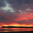 CORONADO SUNSET by fsmitchellphoto