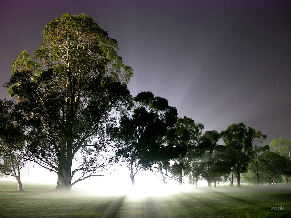 One Foggy Night by zook