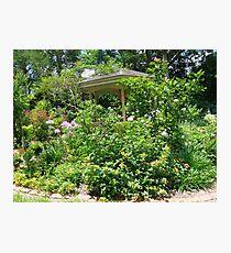 Gazebo at June's Garden, Bayou George, FL Photographic Print