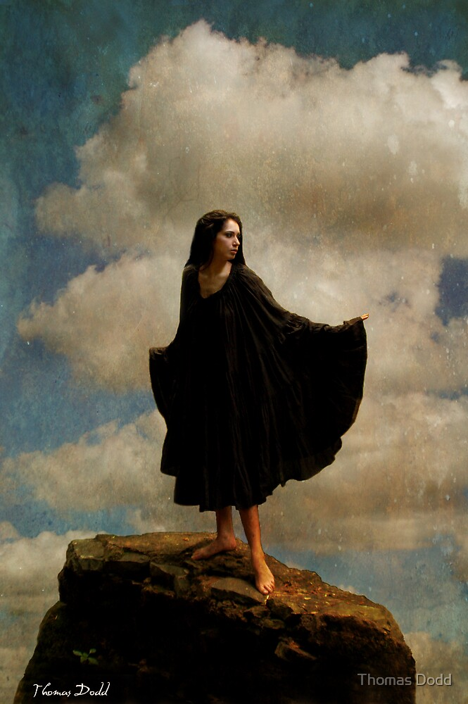 Expecting to Fly by Thomas Dodd