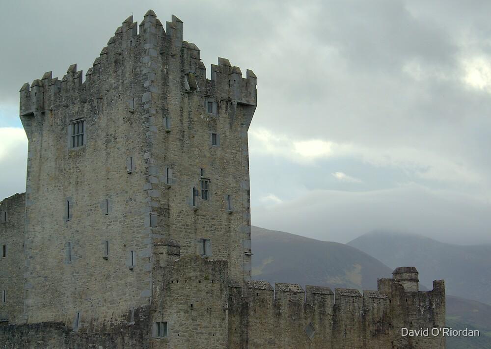 Ross Castle by David O'Riordan