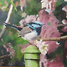 'Superb Blue Wren!'  Oil painting on artist board. by Rita Blom