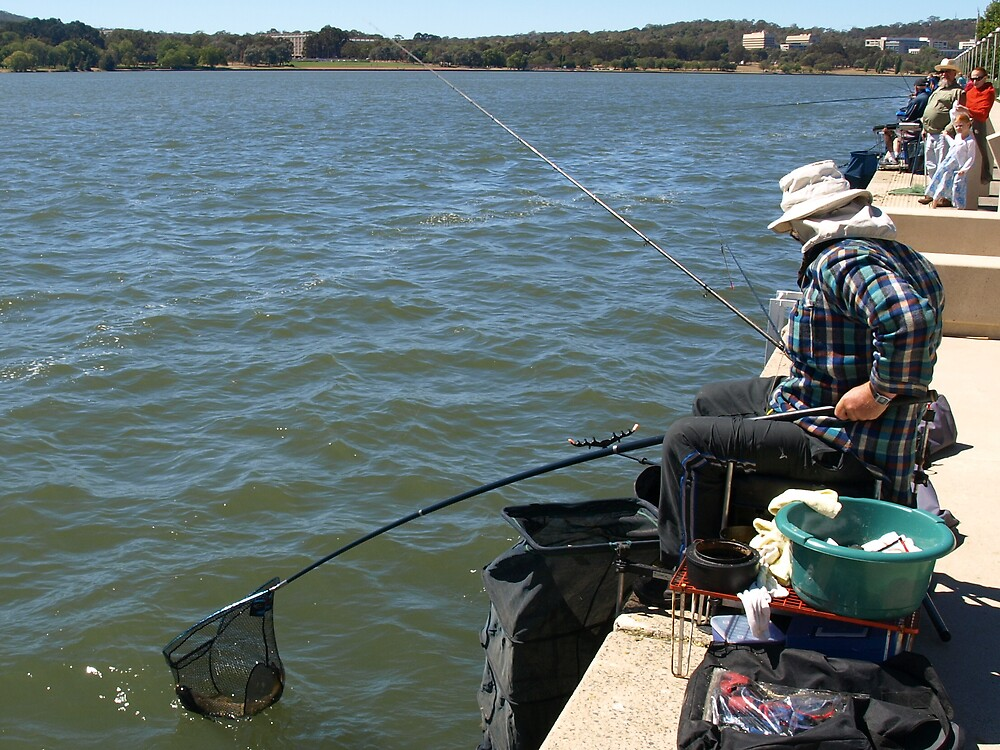 Fishing in Canberra for Carp,  by Tom McDonnell