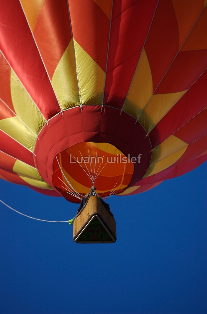 Hot air balloon flight by Luann wilslef
