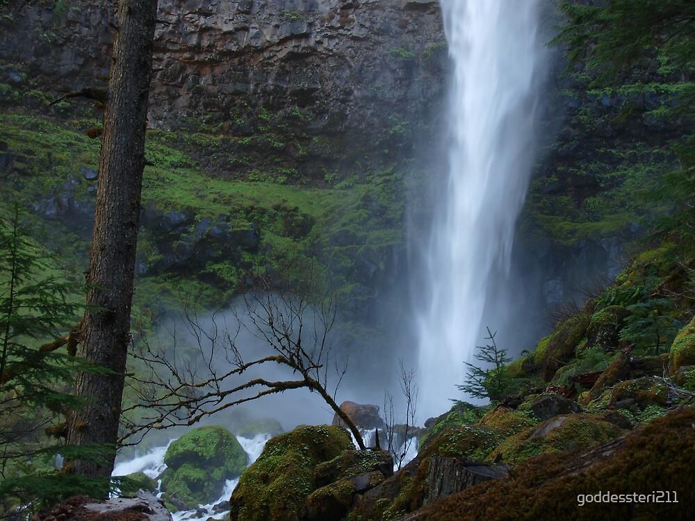 Bottom of Watsons Falls by goddessteri211