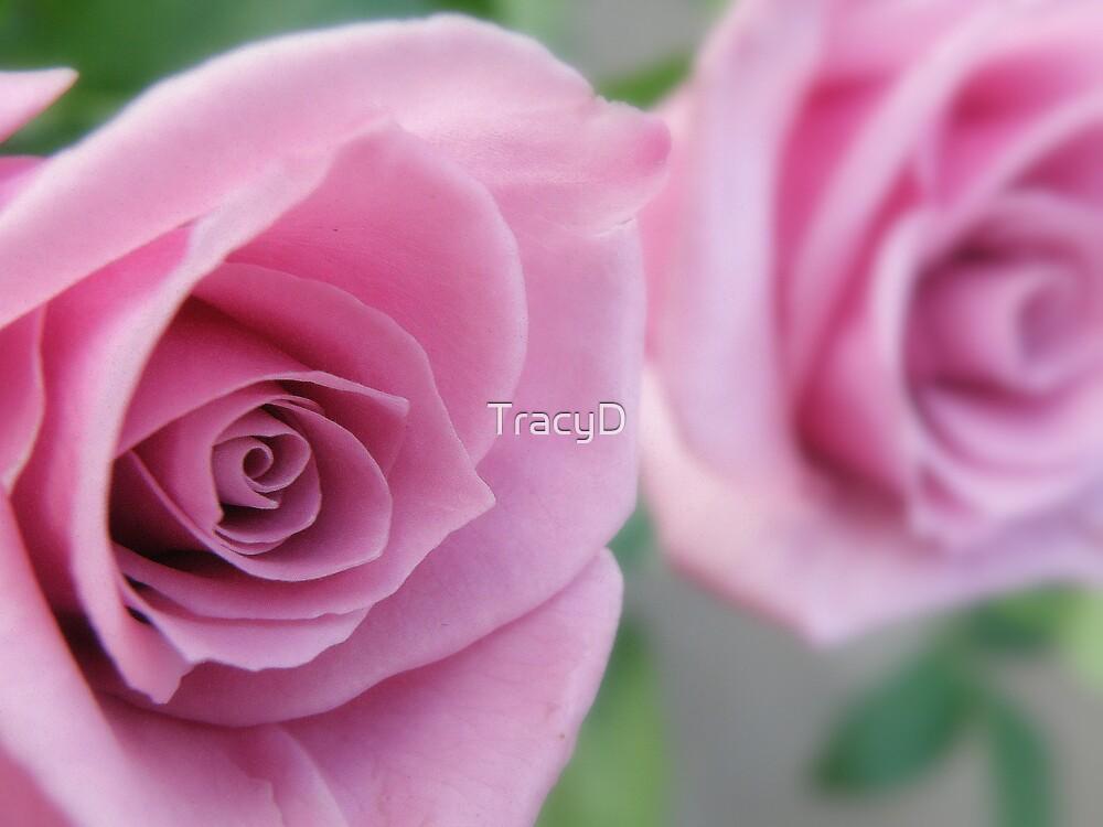 Precious Petals! by TracyD