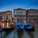 Palazzo Farsetti by Delfino