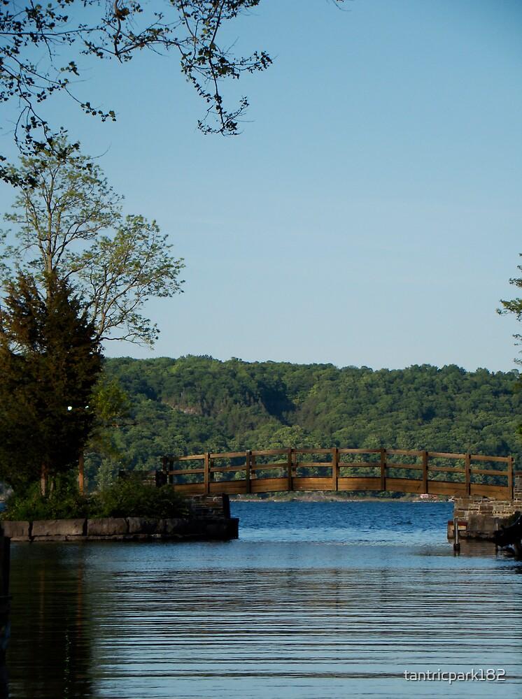 Gateway to cayuga lake by tantricpark182